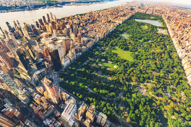 Central Park VLOG